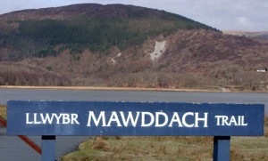 Mawddach Walking Trail